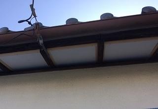 池谷セツさん_190225_0001.jpg